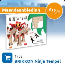 Maandaanbieding BRIKKON Ninja Tempel